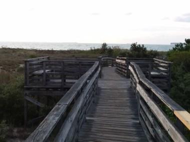 Va Beach First Landing State Park (23)