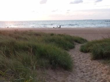 Va Beach First Landing State Park (26)