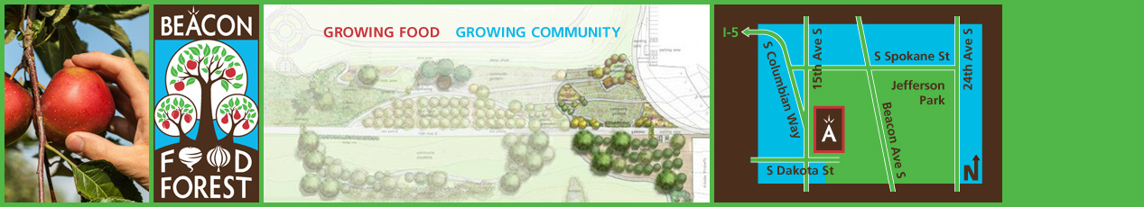Beacon Food Forest - Growing Food, Growing Community