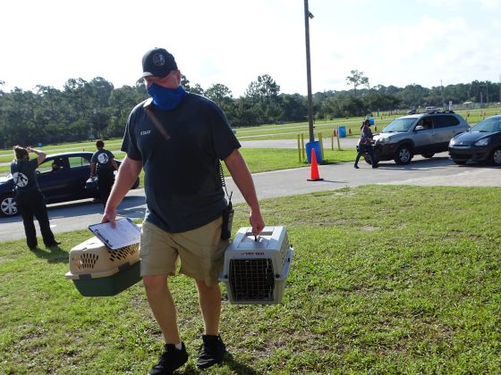 <p><p>Volusia County Animal Services Director Adam Leath was on hand.</p></p><p></p>