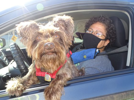 <p><p>Carmen Sanchez was one resident who took advantage of the drive-thru event, seen here with her charismatic pup.</p></p><p></p>