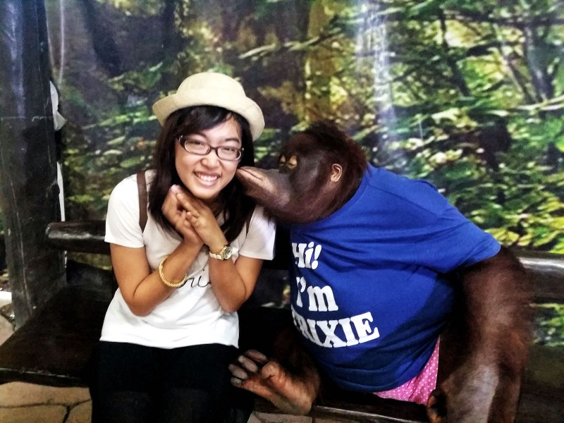 a girl kissed by an orangutan in avilon zoo