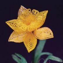 daffodilcmyk300ppi