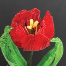tulipcmyk300ppi