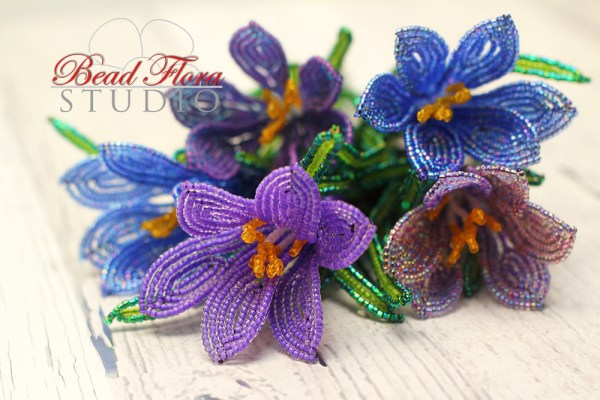 French beaded crocus pdf/video course