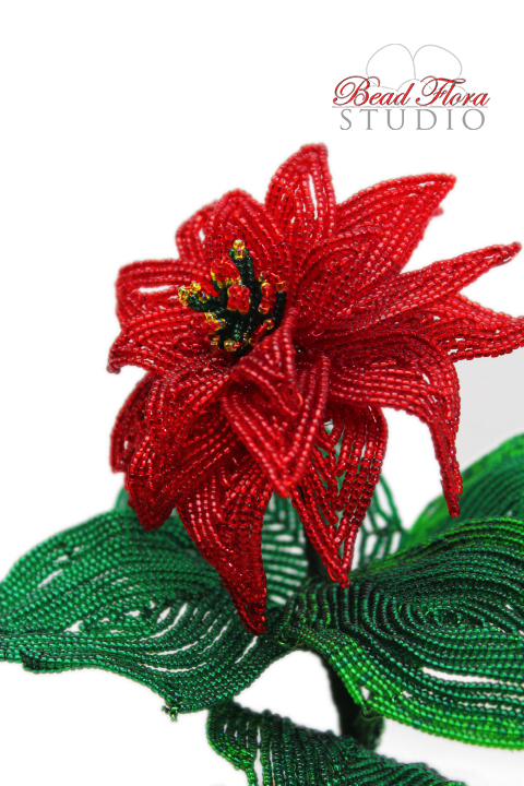 VIDEO CLASS - French beaded winter rose poinsettia video lessons