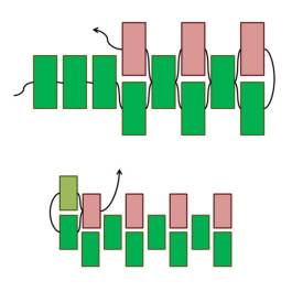 peyote_diagram