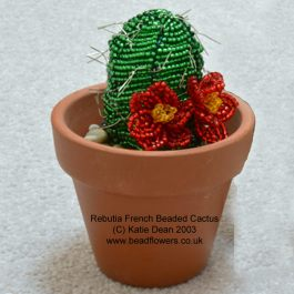 Beaded Cactus pattern