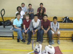 Students learn about greyhounds