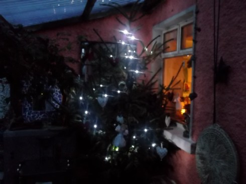 yuletide tree decked with lights at Bealtaine Cottage