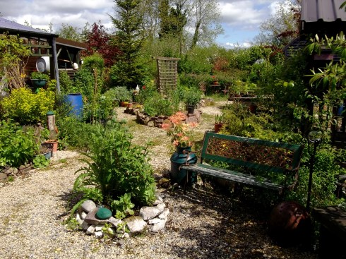 Courtyard garden at Bealtaine Cottage
