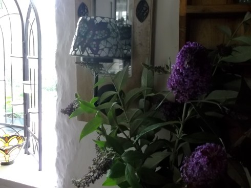 Buddleia in a vase