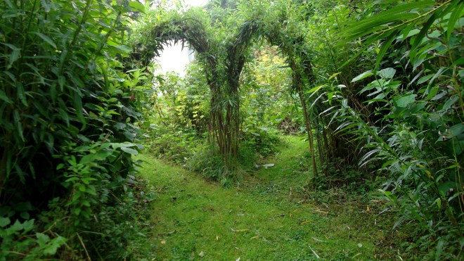 permaculture at bealtainecottage.com 020
