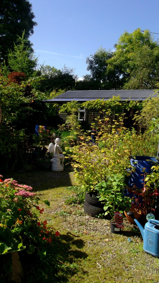 September 2014 bealtainecottage.com 049