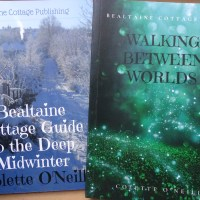 Bealtaine Cottage Bookstore