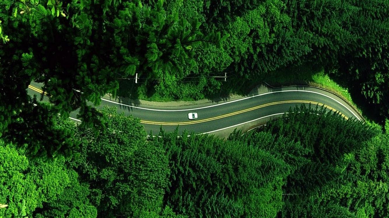 Beam Global-ForestCarRoad-Press Release-June 2021
