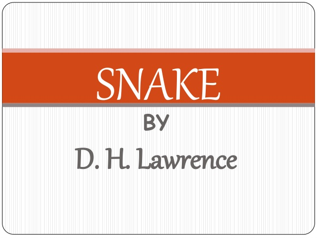 Snake by DH Lawrence Question and Answers