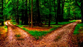 the road not taken analysis by robert frost beaming notes the road not taken summary by robert frost