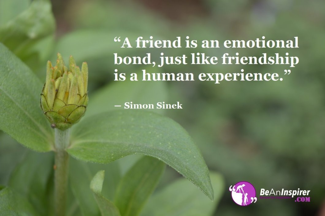 A-friend-is-an-emotional-bond-just-like-friendship-is-a-human-experience-Simon-Sinek-Top-100-Friendship-Quotes-Be-An-Inspirer