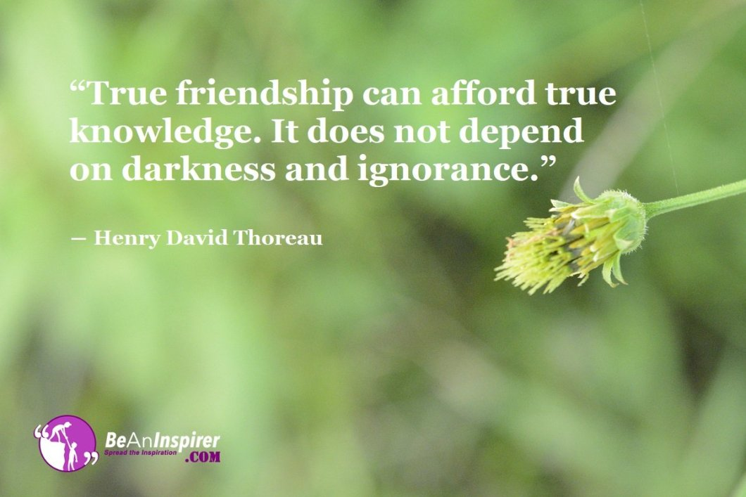 True-friendship-can-afford-true-knowledge-It-does-not-depend-on-darkness-and-ignorance-Henry-David-Thoreau-Top-100-Friendship-Quotes-Be-An-Inspirer