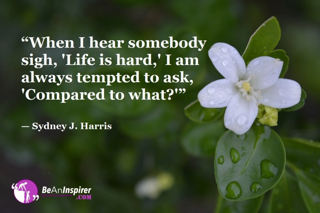 When-I-hear-somebody-sigh-Life-is-hard-I-am-always-tempted-to-ask-Compared-to-what-Sydney-J-Harris-Top-100-Life-Quotes-Be-An-Inspirer