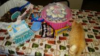 The snack table was infiltrated! Note the cake made to look like kitty litter
