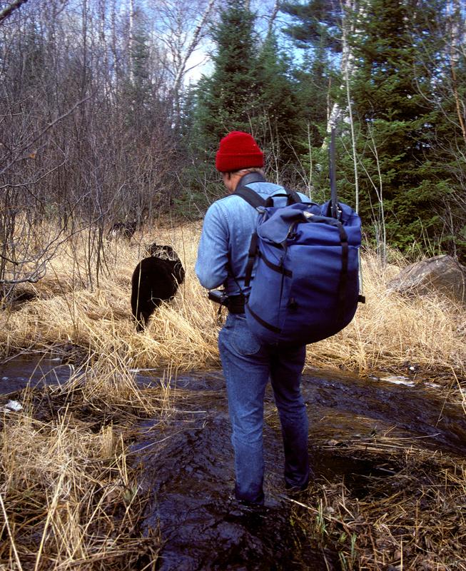 lynn_walking_with_bears.jpg