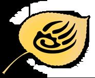 Bear 100 Race