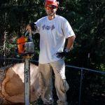 Bearclaw Arborist