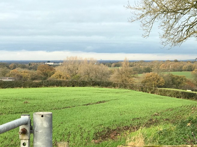 If you look closely you can see Jodrell Bank on the horizon