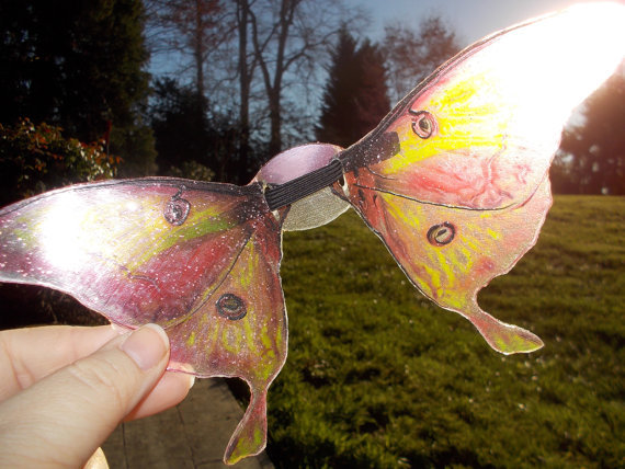 translucent-fantasy-wings-flutterby-in-camille
