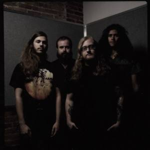 Lion Slicer Band