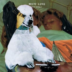 whitelungcover