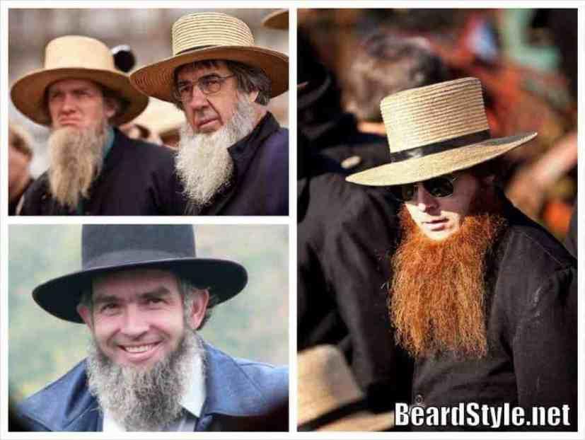 amish beard collage