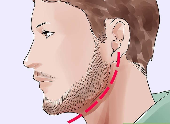 Elicit the beard Line