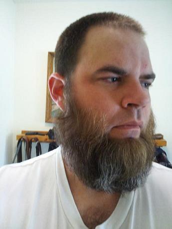 full grown spade beard