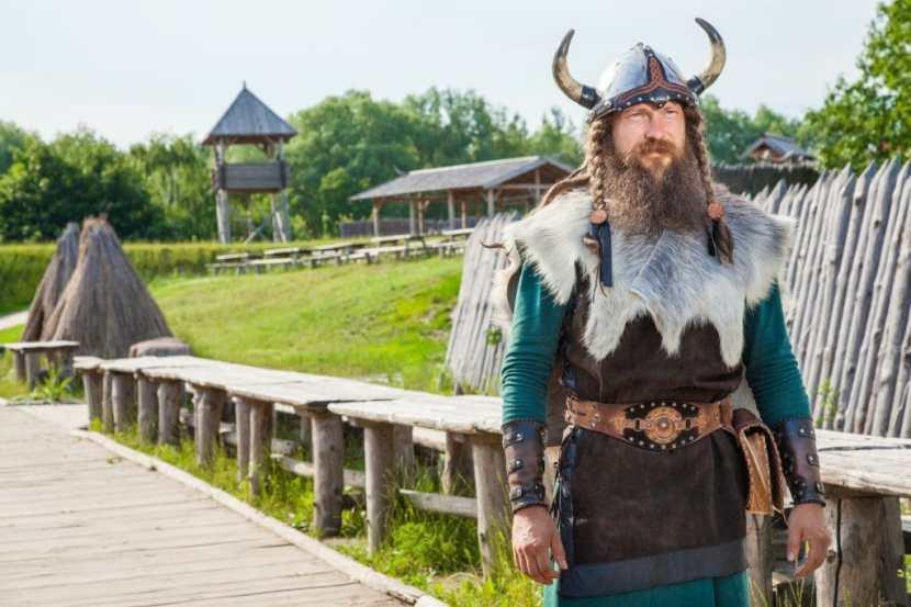 viking beard style 2