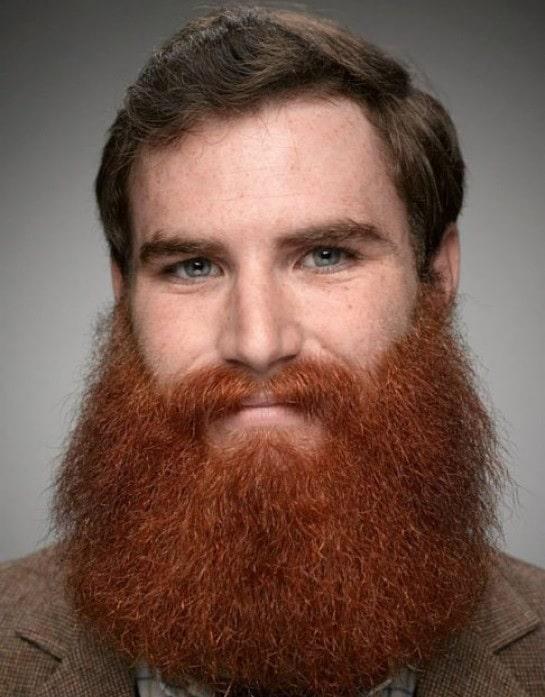 Guy with Red Lumberjack Beard and Brown Hair