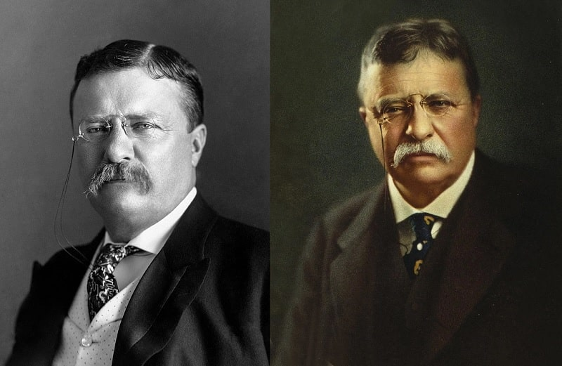 Theodore Roosevelt's Mustache