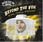 Beyond the Veil icon