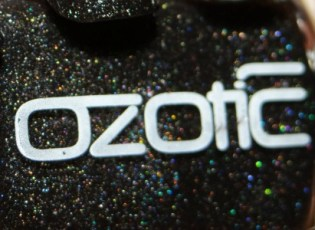 BearlyN Logo-Ozotic
