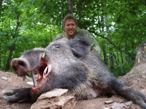 how to hunt boar