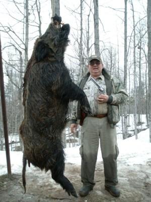 Charging Boar, Hand Gun