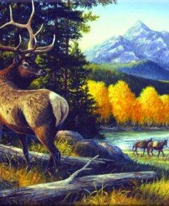 Elk Tempered Glass Cutting Board