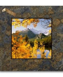 12 x 12 Picture on Slate - Red Bush & Aspen, McClure Pass, Colorado