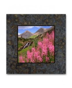 Single Coaster Picture on Slate - Fireweed