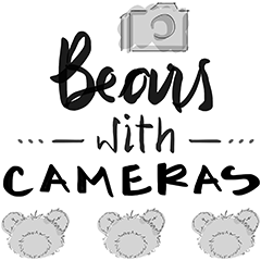 bears with cameras