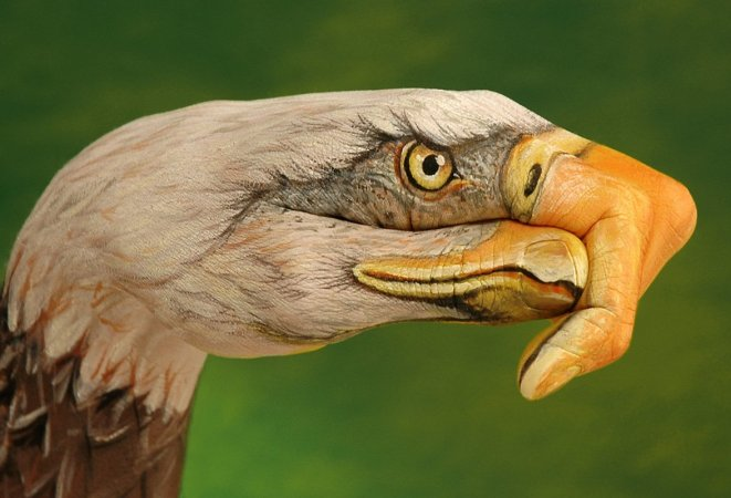Wonderland Nature (Gallery) - Fantasy BodyPainting by Guido Daniele