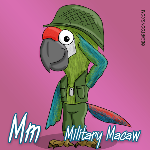 M is for Military Macaw Animal Alphabets cartoon Bearman Cartoons