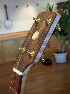 banjo 014 headstock right front view